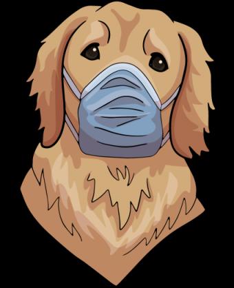 coronavirus-scary-out-there-csat-ai